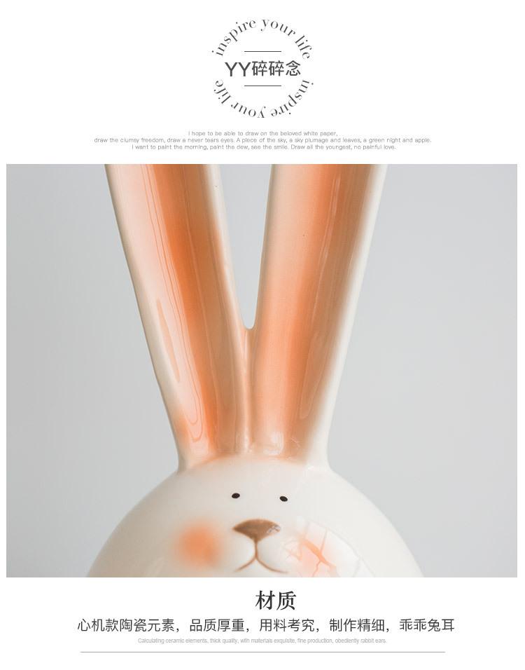 1I820006 Piggy Rabbit (22)