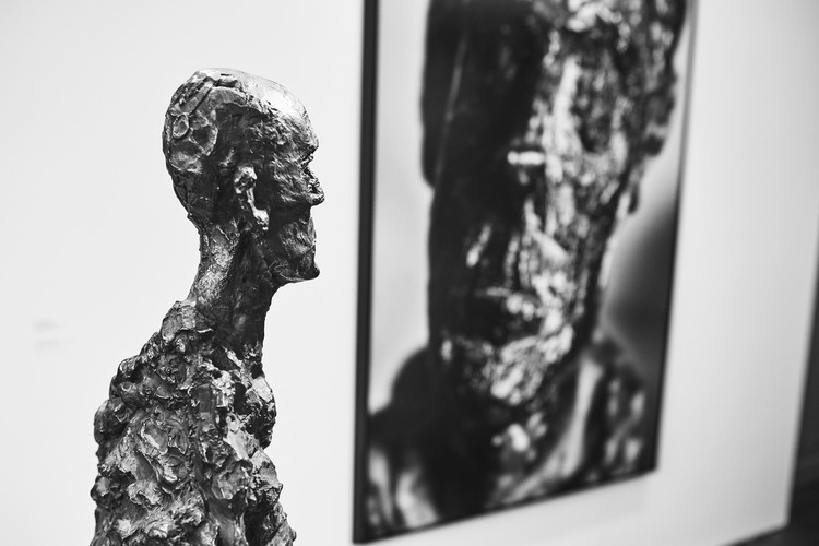 The Relationship Between Sculpture And Photography (3)