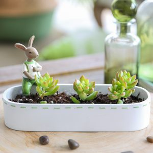 Bunny Flower Pot Wholesale (5)