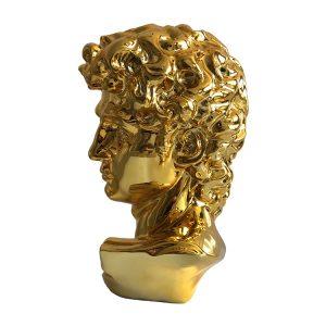 Michelangelo David Head Sculpture Statue (2)