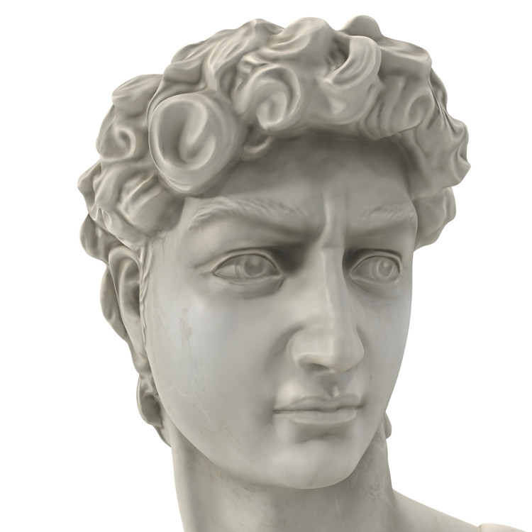 1I715003 Michelangelo David Sculpture (12)