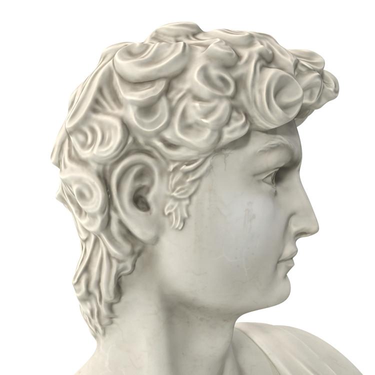 1I715003 Michelangelo David Sculpture (13)