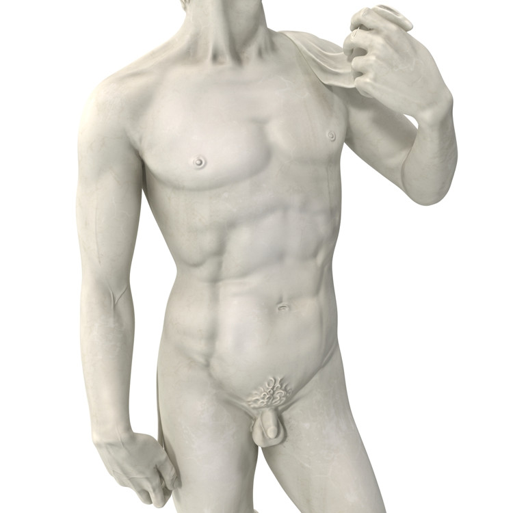 1I715003 Michelangelo David Sculpture (16)
