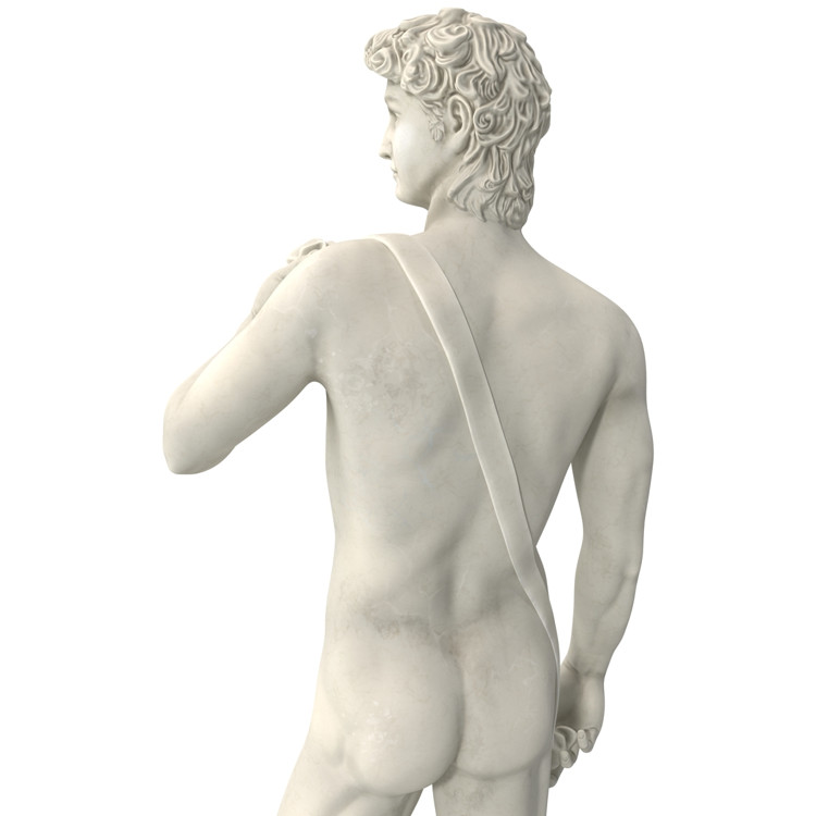 1I715003 Michelangelo David Sculpture (17)