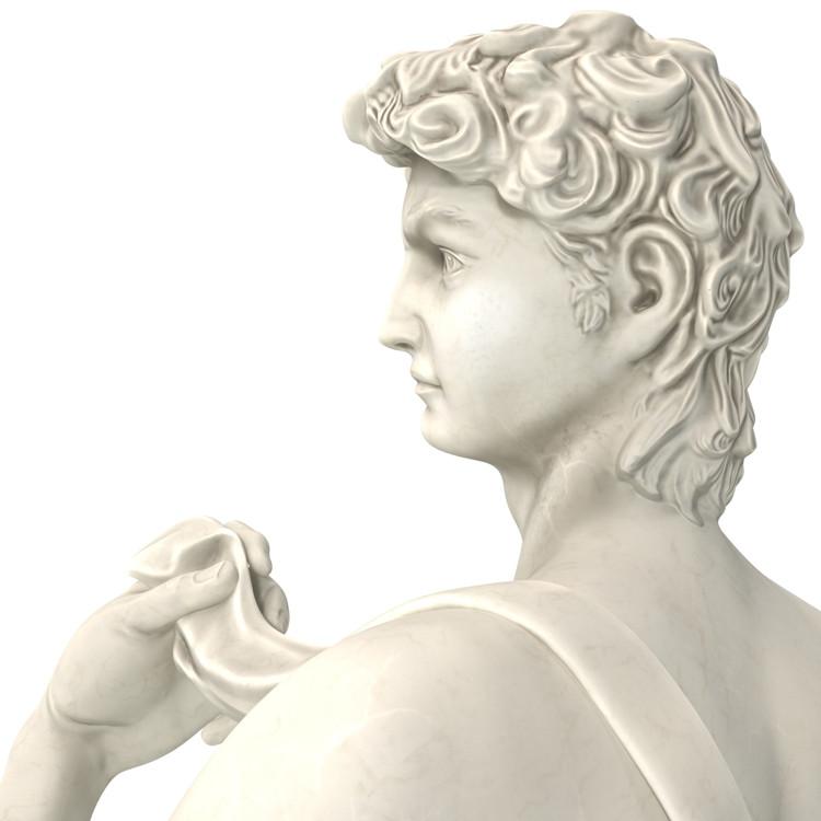 1I715003 Michelangelo David Sculpture (22)
