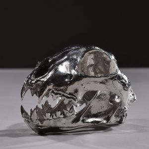 1JA16010 Skull Art Sculpture Resin Chrome Plated (5)1JA16010 Skull Art Sculpture Resin Chrome Plated (5)